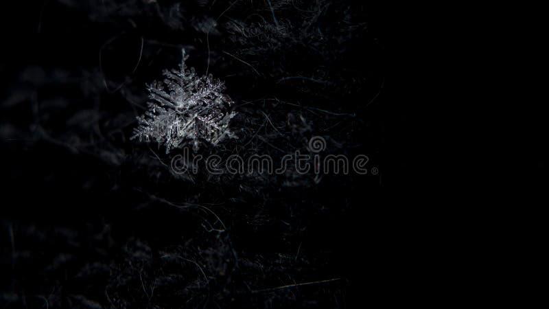 E Glashelder ijs Grote details! De winter Ondiepe Diepte van Gebied Kerstmisachtergrond voor lay-out royalty-vrije stock fotografie