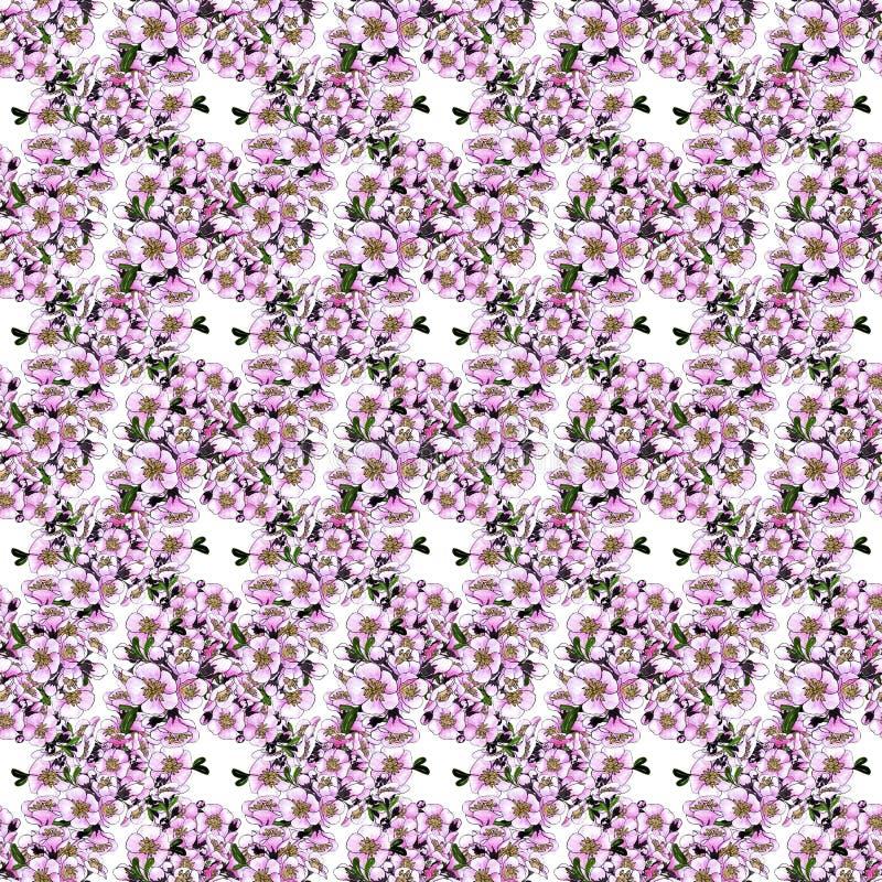 E just rained r Коллаж цветков на предпосылке акварели стоковая фотография