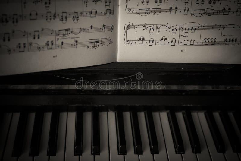 E keys white arkivfoton