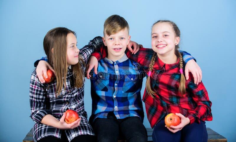 E Kleine Gruppe kleine Kinder, die nat?rliche rote ?pfel halten Nat?rliche Freude in der gesunden Ern?hrung lizenzfreie stockfotografie