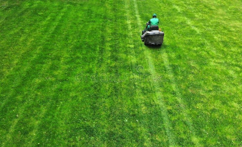 E klippa gräs r royaltyfri bild