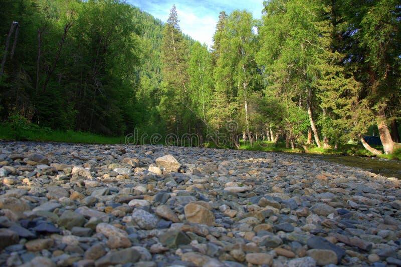 E Krajobraz zdjęcie stock