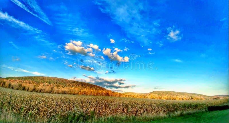 E Mil NATURE& x27; S-SKÖNHET USA Upstate New York royaltyfri fotografi