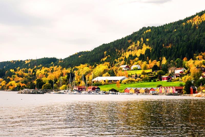E Mooie Fjord royalty-vrije stock afbeeldingen