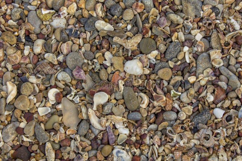 E natuurlijke textuurtextuur stock fotografie