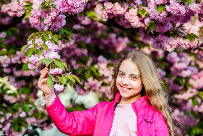 E o E Спа Skincare r счастливая девушка в цветке вишни Сакура стоковое изображение rf