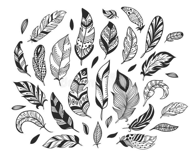 E A pena de pássaro do esboço, a pena artística retro da tinta de tiragem e o vetor emplumar-se de pássaros isolaram-se ilustração do vetor