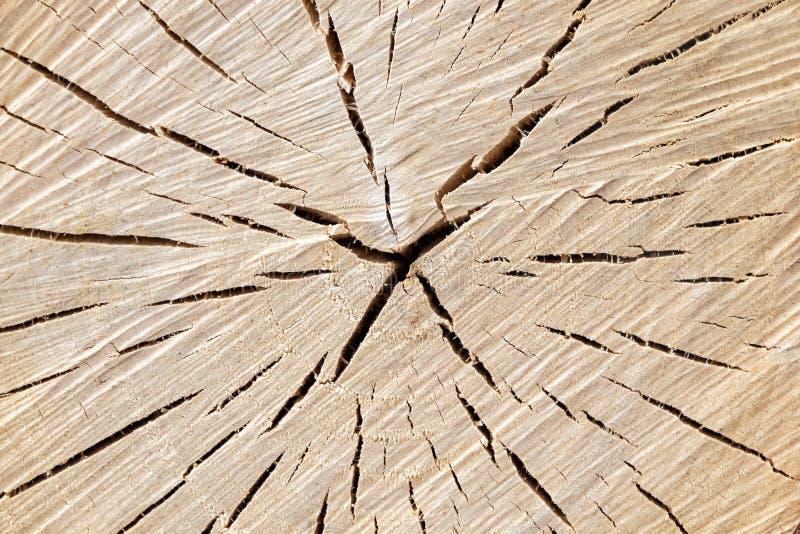 E Priorità bassa di legno fotografia stock libera da diritti