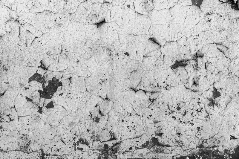 Παλιό σπασμένο χρώμα στο τσιμεντένιο τοίχωμα Ξεφλούδισμα χρωμάτων στην υφή τοίχου Πρότυπο υλικού ρουθούνι γρύλου στοκ εικόνα με δικαίωμα ελεύθερης χρήσης