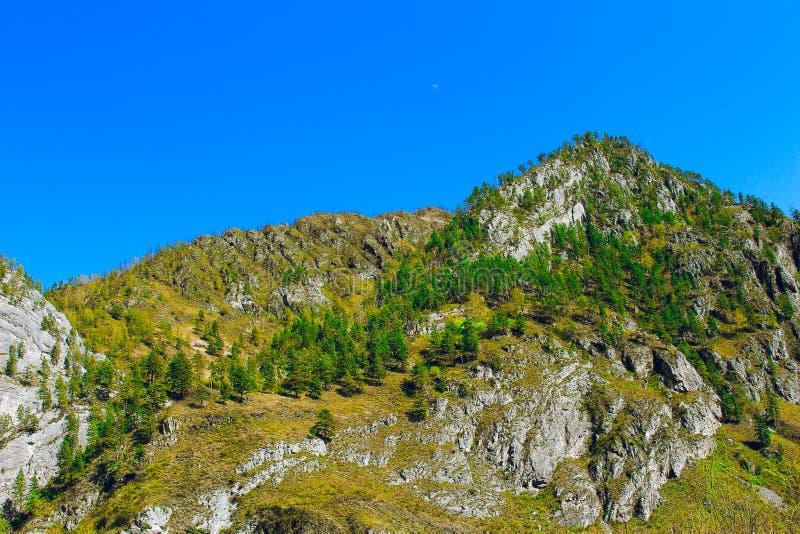 Прекрасный природный пейзаж, пешие прогулки Мажестический горный лес в облачных ландшафтах Зеленый вид на гору Удивительная папа стоковое фото rf