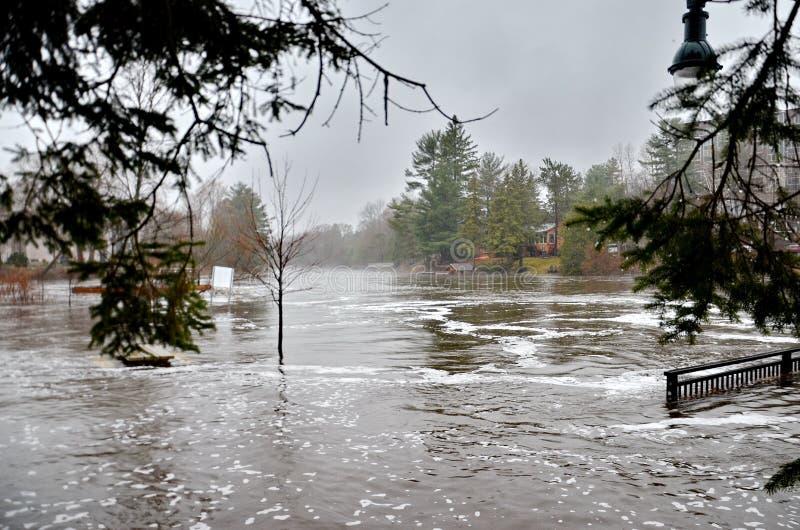 春天洪水在布雷斯布里奇,2019年 库存图片
