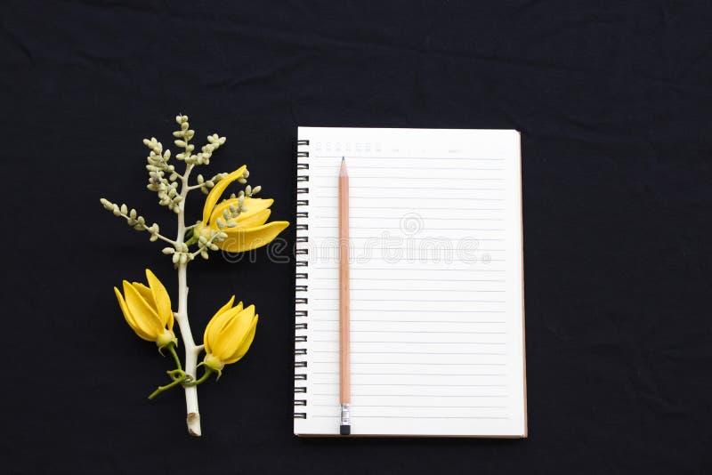 Anteckningsbokstadsplanerare för affärsarbete med blommaylangylang fotografering för bildbyråer