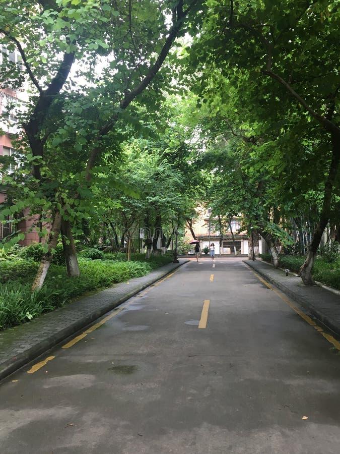 中山大学在广州市圣保罗.