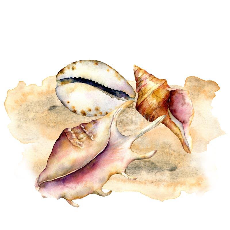 Composición de las cáscaras de la acuarela en la arena Elementos subacuáticos pintados a mano aislados en el fondo blanco acu?tic ilustración del vector