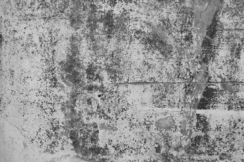 Murs en plâtre de style loft, gris, blanc, vide utilisé comme papier peint Populaire dans le design domestique ou intérieur avec  photographie stock libre de droits