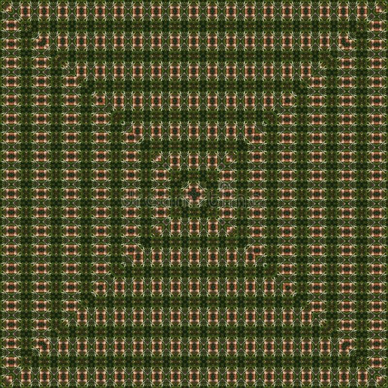 squared небольшие детали r brougham иллюстрация вектора