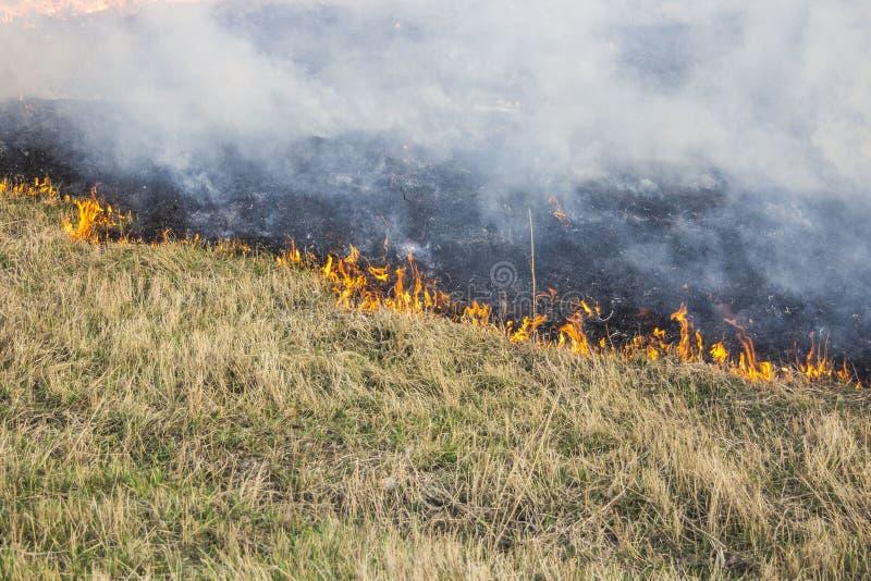 E r r Catastrophe ?cologique Incendie et fum?e photo stock