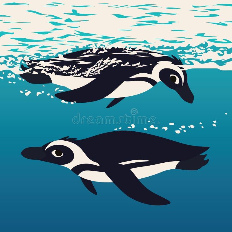 Dos pingüinos flotando en el agua del mar Aves antárticas nadando en el océano, mirándose entre ellas Ilustración vectorial de stock de ilustración