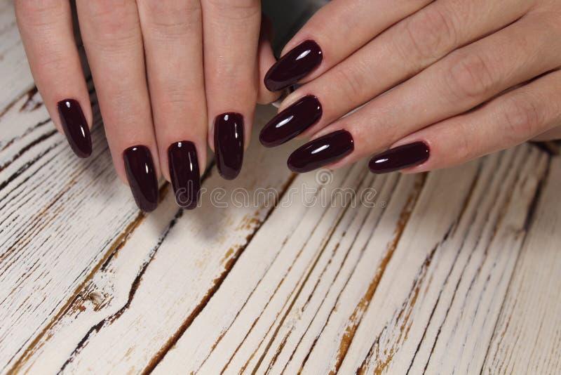 Niesamowite paznokcie naturalne Kobiety i x27;s ręce z czystym manicure Zastosowano polerowanie żelem fotografia stock