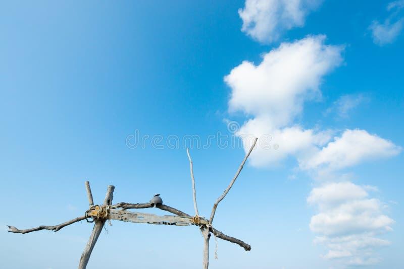 Sommerzeit, schöne sanfte Wolken und hellblauer Himmel bei Sonnenschein Alter Holzbogen isoliert auf blauem Vordergrund Hintergru stockfotos