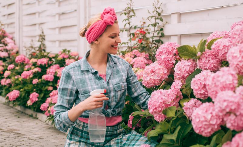 Женская забота о цветах в саду счастливая женщина садовница с цветами гидрангея Весна и лето Цветы из гринхауса стоковое фото rf