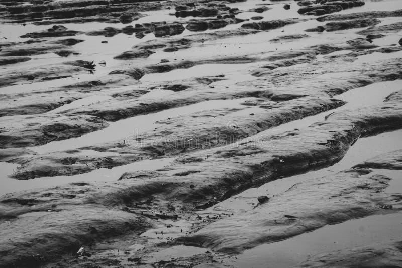 Plaque de boue marémotrice Plage de Riple Marée basse La nature sur les côtes Contexte gris pour la triste vie dans le concept du photographie stock libre de droits