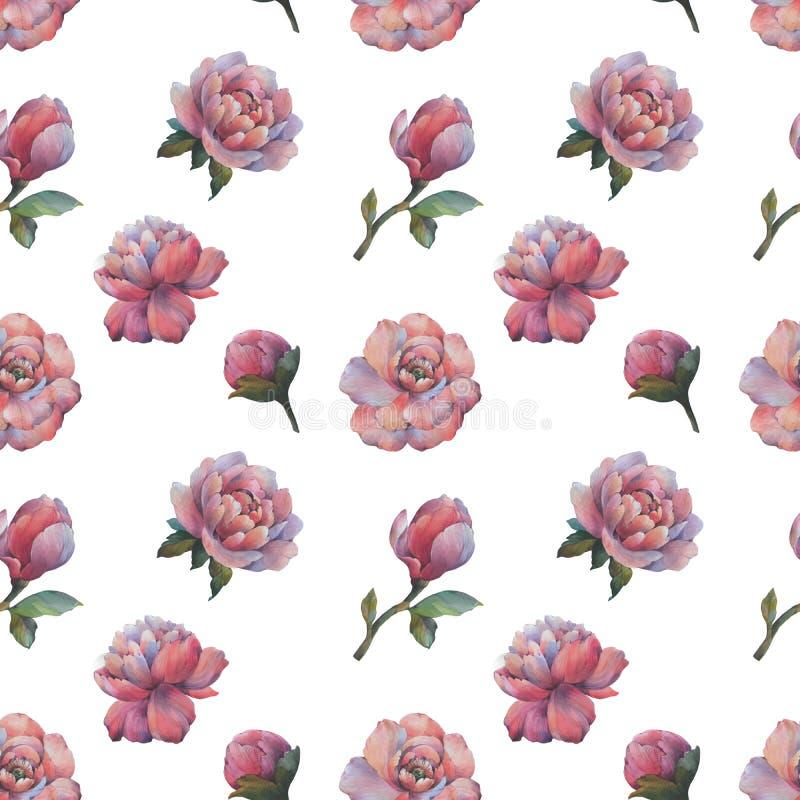 La composición de las flores de peonía Patrón de color de las flores sin inconvenientes Patrón botánico peonatos de acuarela stock de ilustración
