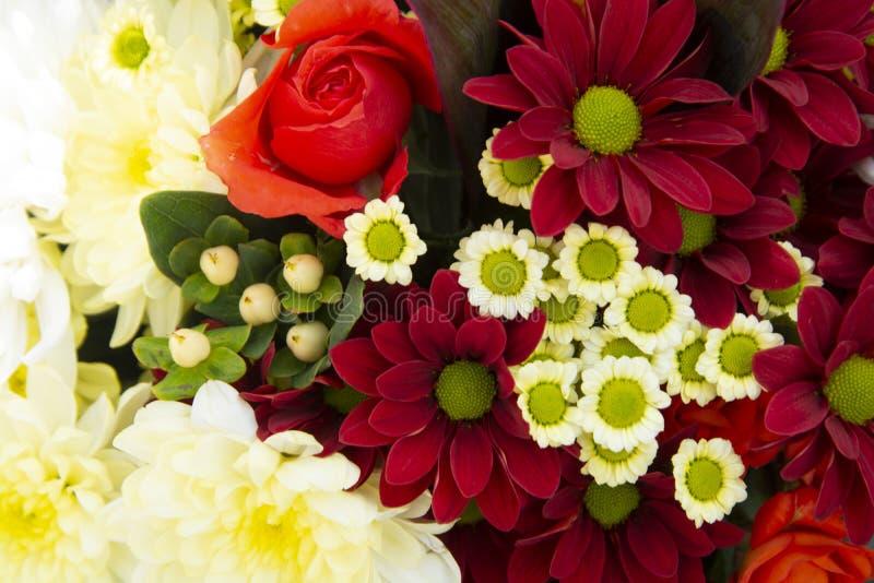 Flores de bouquet coloridas de primavera com rosas, crisântemo e camomila Bonito presente de flor Modelo de projeto Copiar espaço fotos de stock royalty free