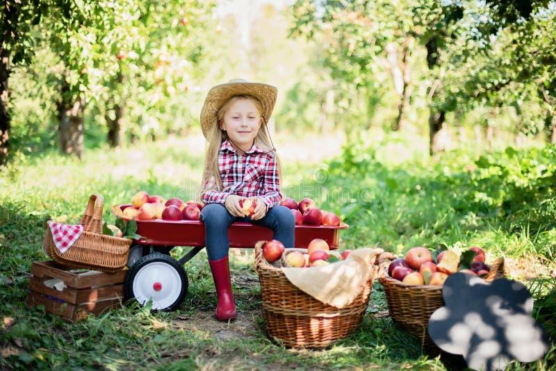 Κορίτσι με Apple στο Apple Orchard. Όμορφο κορίτσι που τρώει οργανικό μήλο στον Î στοκ εικόνες