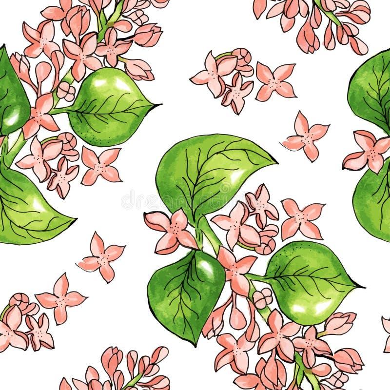 Безшовная картина с цветками акварели Ветвь цветка яблони r o бесплатная иллюстрация
