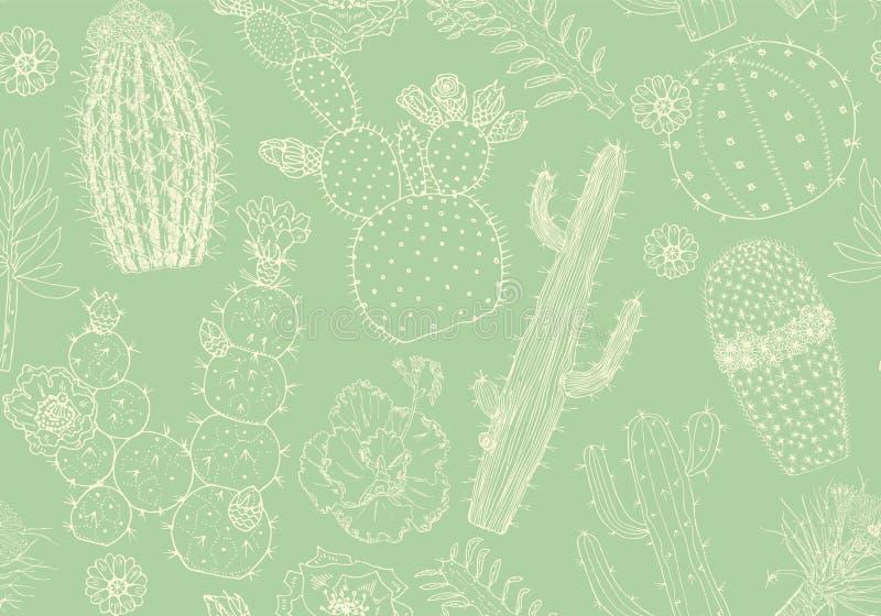 Cactus Patrón sin soldadura y flores Elementos acogedores y bonitos Colección de suculentos y plantas tropicales en doodle vintag stock de ilustración