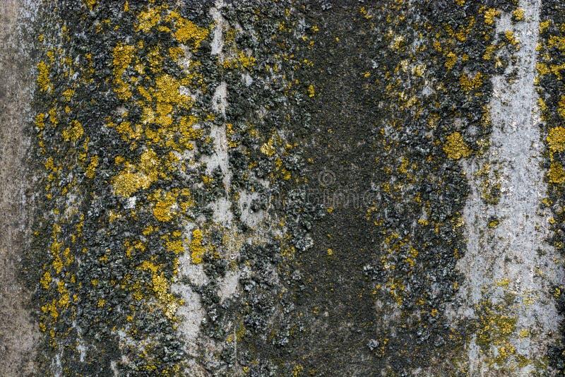Старый серый волнообразный шар Текстура асбест-цементного материала с местом для текста Фоновый рисунок планки стоковое изображение rf