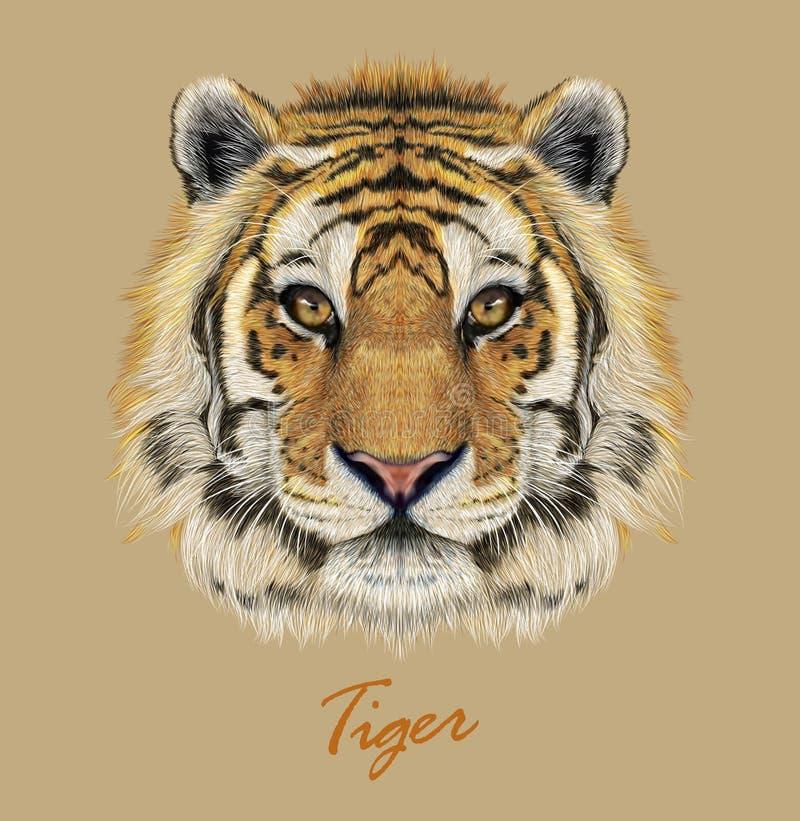 Visage animal tigre Portrait de tête du Vector Bengale Bête de fourrure réaliste du tigre Oeil prédateur du chat sauvage Big cat  illustration stock