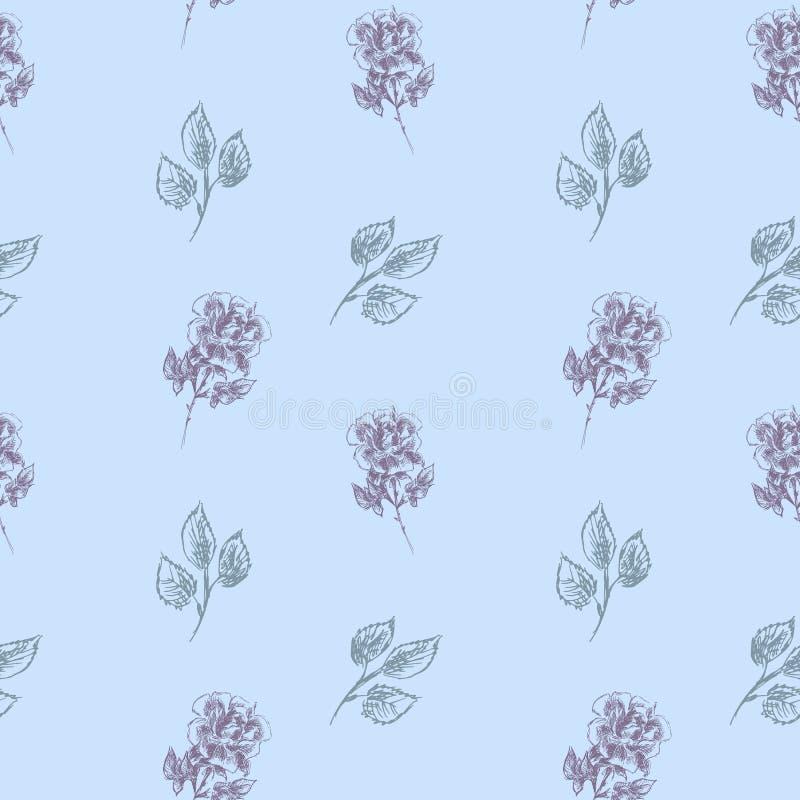 带花朵玫瑰的载体花卉无缝图案 柔和蓝色背景上的无缝花卉图案 玫瑰用铅笔画 库存例证