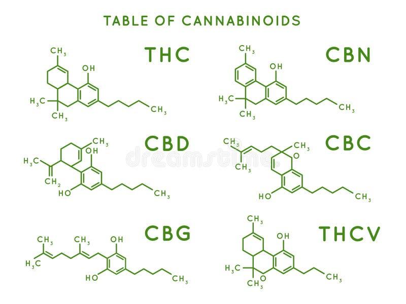 Kannabinoidstruktur Kannabidiolmolekylstrukturer, THC- och CBD-formel Marijuana eller cannabis molekylvektor vektor illustrationer