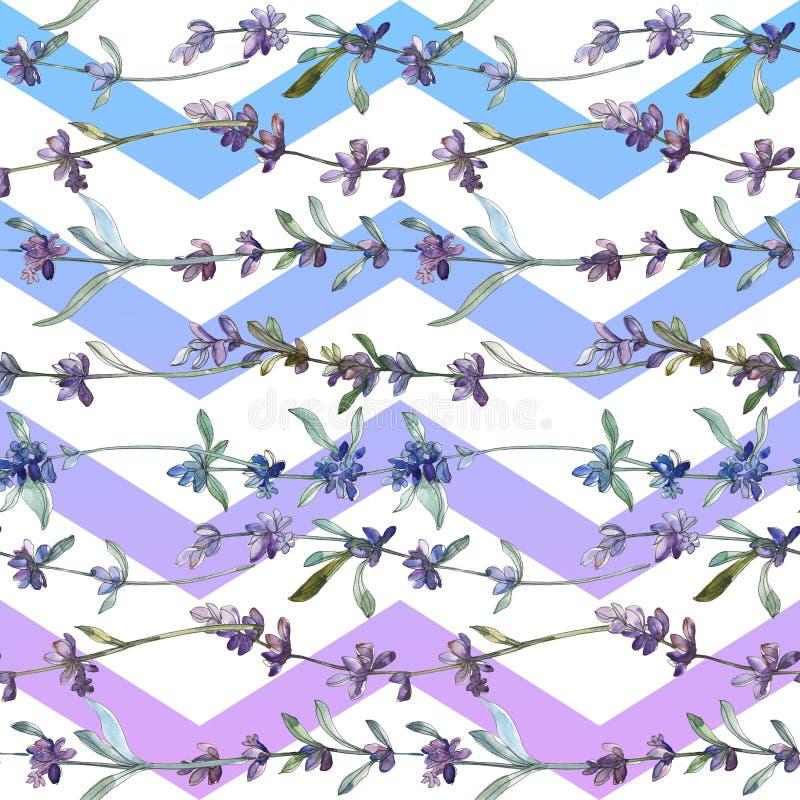 紫色薰衣草植物花 水彩背景插图集 无缝背景模式 免版税库存图片