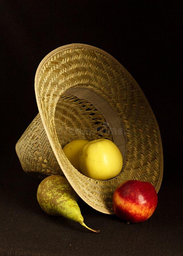 葡萄是果子,植物莓果,开花植物类葡萄属的落叶木质的藤 免版税库存图片