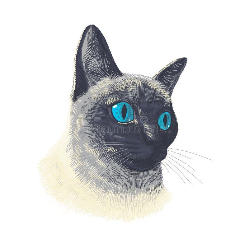 Le visage mignon d'un animal de chat siamois Portrait de tête de chat amusant Vector Portrait réaliste de fourrure du chaton thaï illustration libre de droits