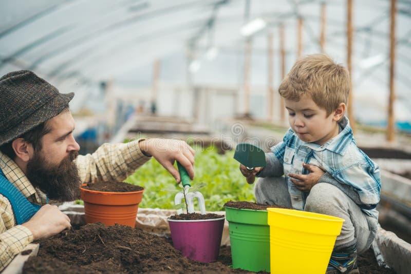 Calidad del suelo y agricultura agricultura moderna en buena calidad del suelo gran calidad del suelo para una agricultura exitos fotos de archivo