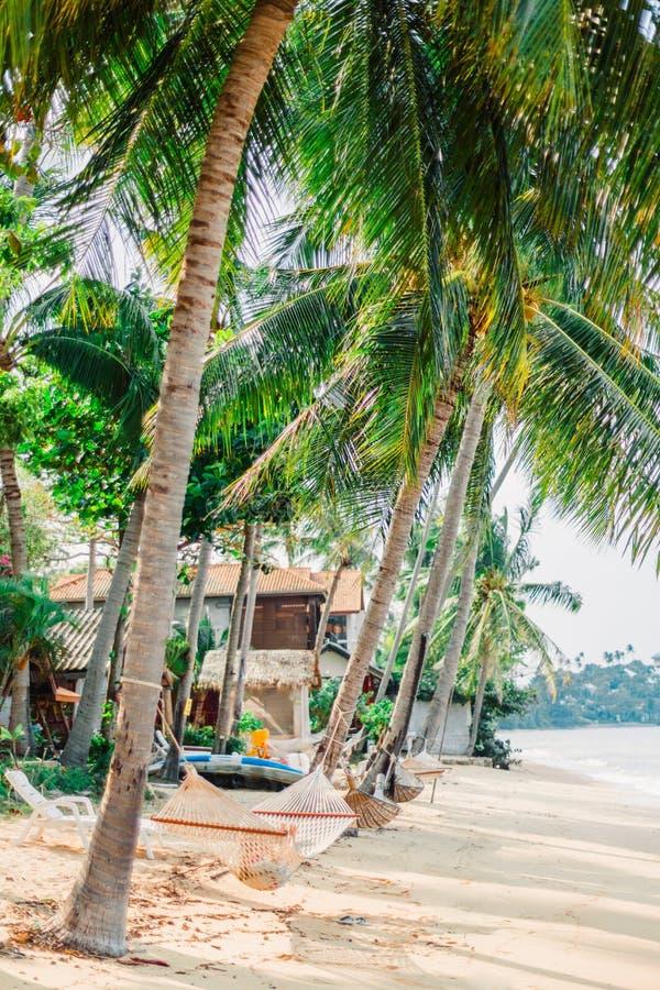 Huts en bungalows op de oceaan onder kokokospalmen Hammocks gestrekt tussen de boomstammen van palmbomen Meisje rust op een royalty-vrije stock foto