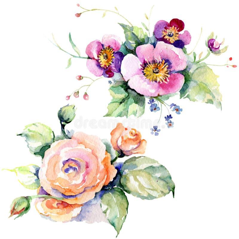 Розовые букетные цветы Цвет воды Элемент иллюстрации изолированных букетов иллюстрация штока