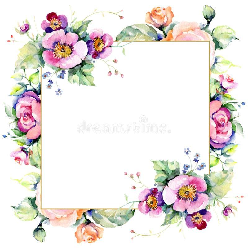 Розовые букетные цветы Набор иллюстраций цвета воды Граница рамки бесплатная иллюстрация