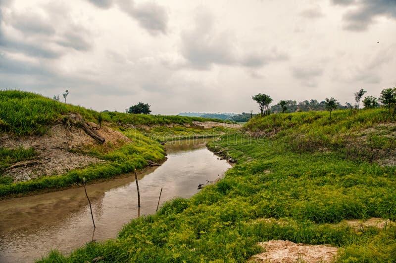 Амазонка в boca de валерии, Бразилии Подача Амазонкы на тропический ландшафт на облачном небе Природа и дикая жизнь стоковая фотография