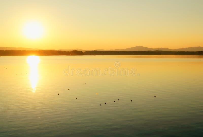 海洋景观 夏日阳光水景 柔和阳光下的海港 图库摄影