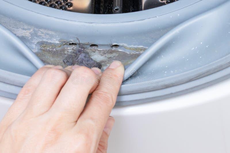 肮脏的发霉的洗衣机封胶和鼓关闭 模子、土和limescale在洗衣机 家用电器 库存照片