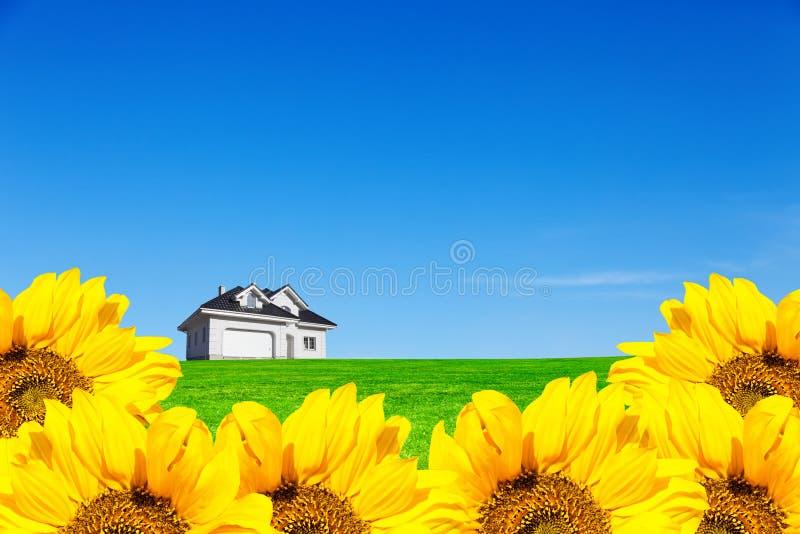 向日葵田的草地里 一个完美的住处 屋子上方一片惊艳的天空 库存图片