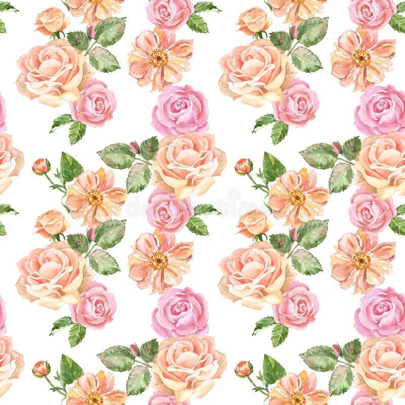 水彩柔和的玫瑰无缝复古图案 白色背景的粉色花园花 浪漫版 皇族释放例证