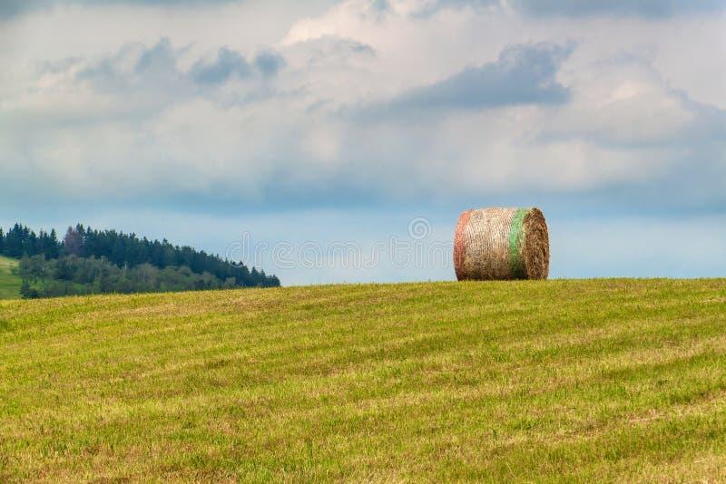 Balas secas de la paja en prado segado Prado del verano en la República Checa Trabajo en una granja agrícola imagenes de archivo