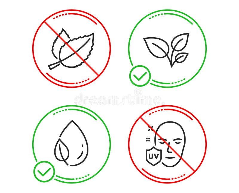 Роса листьев, лист и листья мяты набор значков Ультрафиолетовый знак защиты Вырастите завод, падение воды, Mentha травяной r иллюстрация штока