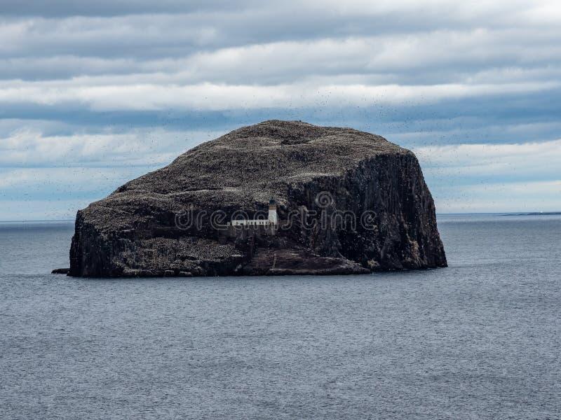 低音岩石 从东南海岸的看法在北部贝里克附近 E 免版税库存图片
